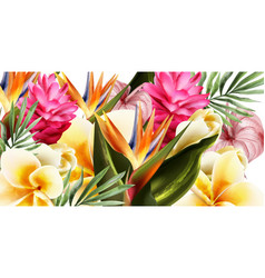 tropic flowers watercolor background vector image