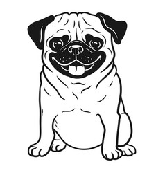 pug dog black and white hand drawn cartoon vector image