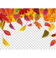 autumn leaves fall falling blurred leaf autumnal vector image