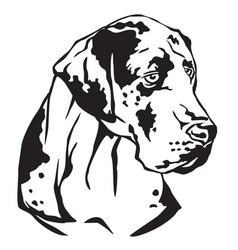 Decorative portrait of great dane vector