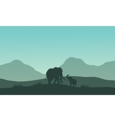 Elephant silhouette in fields vector image