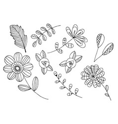 Hand drawn of wild flowers isolated on white vector