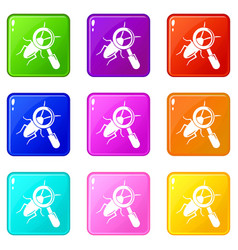 Search insect icons set 9 color collection vector
