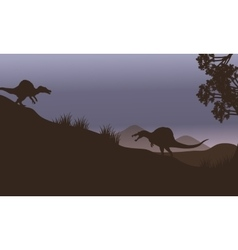 Silhouette of two spinosaurus in fields vector