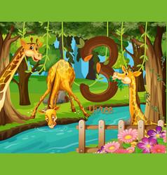 Three giraffe next to the water vector