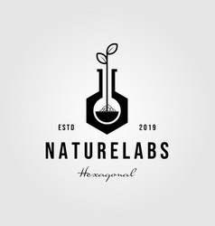 vintage hexagon nature labs leaf logo designs vector image