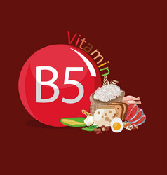 vitamin b5 vector image