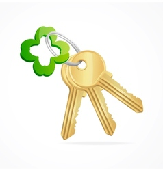 Gold keys and clover key chain vector image