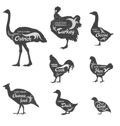 Poultry silhouette sign set livestock groceries vector