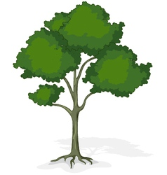 tree cartoon for you design vector image
