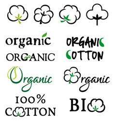 Organic cotton design elements vector image