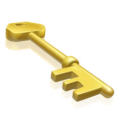Brass or gold key vector