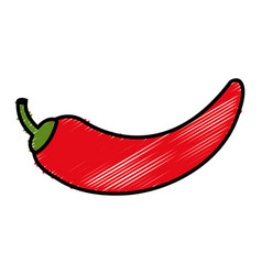 Chili pepper isolated icon vector