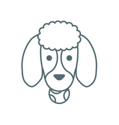 Cute little dog french poodle head with ball line vector