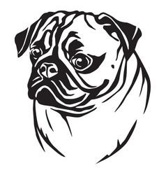 decorative portrait of pug vector image