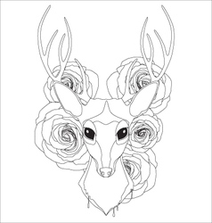 Graceful deer coloring page for adult vector image