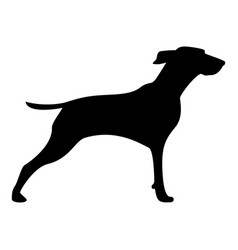 Hunter dog or gundog icon black color icon vector