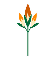 Lily flat on white vector