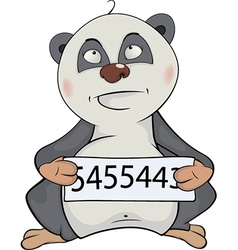 Panda the prisoner Cartoon vector