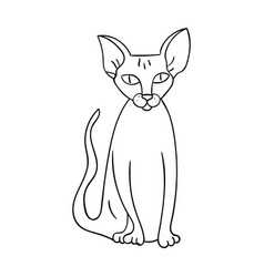 peterbald icon in outline style isolated on white vector image vector image