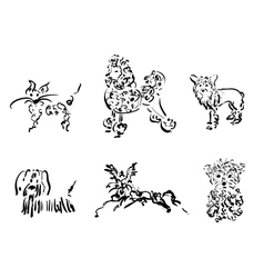 Dogs collection only contour vector image vector image