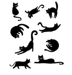 black lovely cats vector image vector image