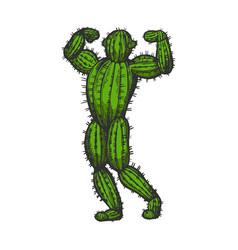 Cactus man posing color sketch engraving vector