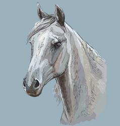 Colorful horse portrait-3 vector