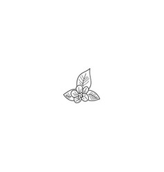 flower outline icon vector image