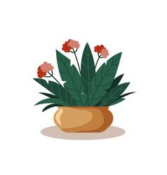 Green natural home plants in pot concept room vector
