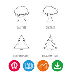 Tree oak-tree and christmas tree icons vector