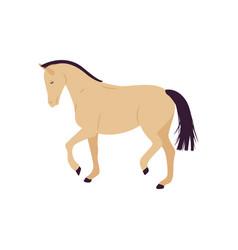 Cartoon horse flat style pony vector