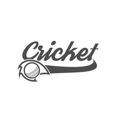cricket club emblem and design elements team logo vector image vector image