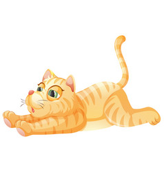 A lazy cat on whiye background vector