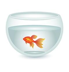 Aquarium with gold fish vector