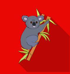 australian koala icon in flat style isolated on vector image