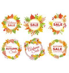 autumn sale badges fall season sales autumnal vector image