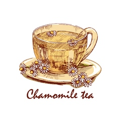 Colored hand drawn cup of chamomile tea vector
