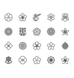 flowers flat line icons beautiful garden plants vector image