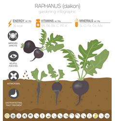 Gardening infographic new 119 vector
