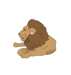 lion lies vector image