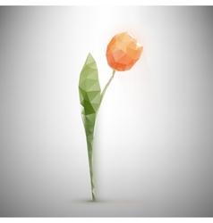 Polygonal tulip vector
