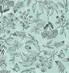 Seamless pattern with herbs light green background vector image