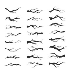 set dry tree branches vector image vector image