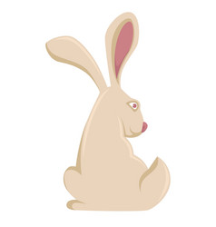 bunny or pet rabbit hare cartoon icon vector image