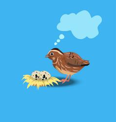 portrait of a cute quail vector image