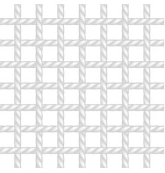 net of rope in white design vector image