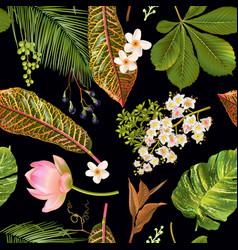 tropial plants pattern vector image