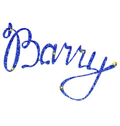 barry name lettering tinsels vector image