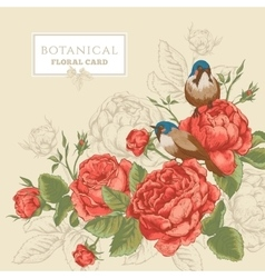 Botanical floral card with roses and birds vector image